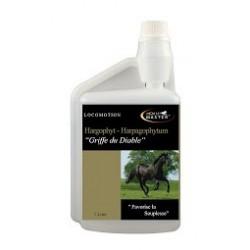 Harpagophytum flacon 1L Horsemaster
