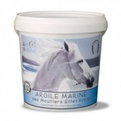 Argile marine effet froid 1kg5 Animarine