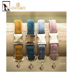 Collier Velvet Kentucky