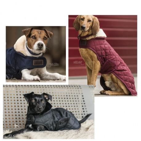 Couverture Kentucky pour chien