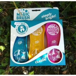 Magic brush trio brosses classic