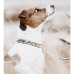 Collier de chien Pied de Poule Kentucky noir et blanc