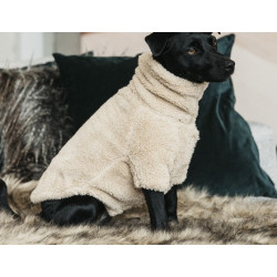 Pull pour chien teddy fleece Kentucly 52156